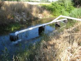 FRWA-goose-creek